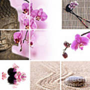 Pink Orchid And Buddha Collage Poster