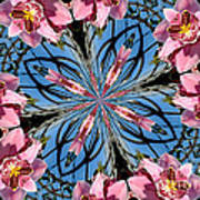 Pink Orchid Kaleidoscope 2 Poster