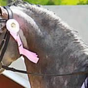 Pink Ribboned Grey Poster