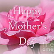 Pink Rose Mother's Day Card Poster