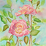 Pink Roses And Bud Poster