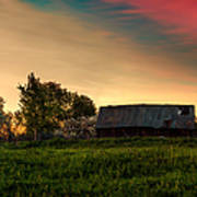 Pink Sunrise. Old Barn An Cherry Blossom Poster