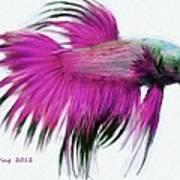 Pink Tropical Fish Poster