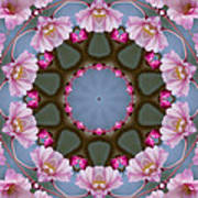 Pink Weeping Cherry Blossom Kaleidoscope Poster
