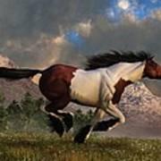 Pinto Mustang Galloping Poster