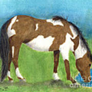 Pinto Mustang Horse Mare Farm Ranch Animal Art Poster