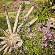 Pioneer Blossoms - Casper Wyoming Poster