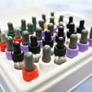 Pipette Bottles In Tray Used For Allergy Test Poster