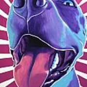 Pit Bull - Valen Poster