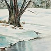 Placid Winter Morning Poster