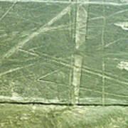Plains Of Nazca - Spider Poster