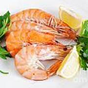 Plate With Shrimps  Poster