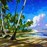 Playa Bonita Poster by Douglas Simonson