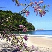 Playa Espadillia Sur Manuel Antonio National Park Costa Rica Poster
