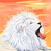 Playful White Lion Poster