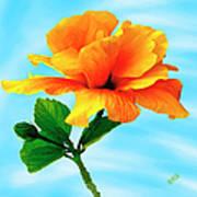 Pleasure - Yellow Double Hibiscus Poster