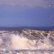 Plum Island Waves Poster
