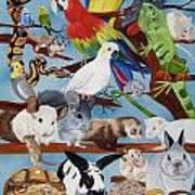 Pocket Pets Poster