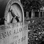 Poe's Original Grave Poster by Jennifer Ancker