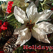 Poinsetta Christmas Card Poster