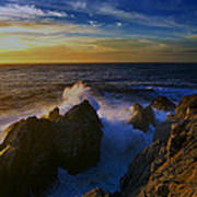 Point Lobos Two Poster