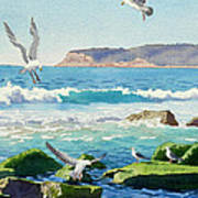 Point Loma Rocks Waves And Seagulls Poster
