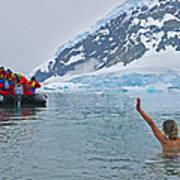 Polar Dip Poster