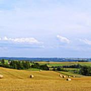 Polish Field Poster