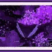 Polka Dot Butterfly Purple Poster