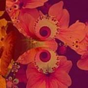 Polyanthus Spiral Poster by Nancy Pauling