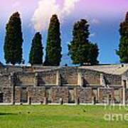 Pompeii Walls And Trees Poster