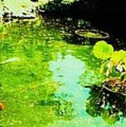 Pond 1 Poster