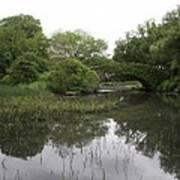 Pond And Bridge Poster