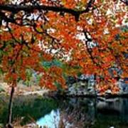 Fall At Lost Maples State Natural Area Poster