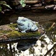 Pond Frog Statuette Poster