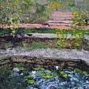 Pond In The English Walled Gardens Poster