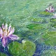 Green Pond With Water Lily Poster