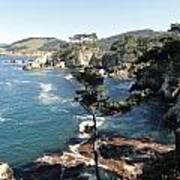 Pont Lobos Cove Poster