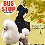 Poodle Standard Art - Bus Stop Movie Poster Poster