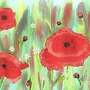 Poppies And Daisies Poster