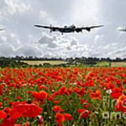 Poppy Fly Past Poster