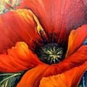 Poppy Red Poster