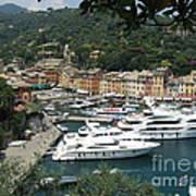 Port Of Portofino Poster