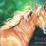 Portrait Of A Palomino Poster
