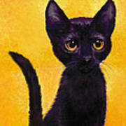 portrait of a small black cat named  LuLu Poster