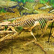 Postosuchus Fossil Poster