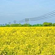 Power Lines In Innsworth Poster