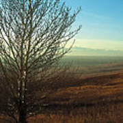 Prairie Autumn 5 Poster