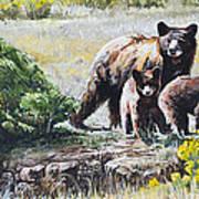 Prairie Black Bears Poster by Aaron Spong