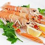 Prawns With Lemon And Parsley  Poster